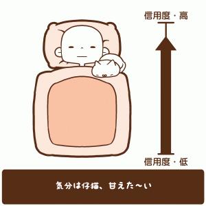 猫さんの寝る場所