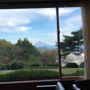 GOTOトラベルを利用して一泊二日での小旅行 富士山の見えるホテルでのんびりしてきました