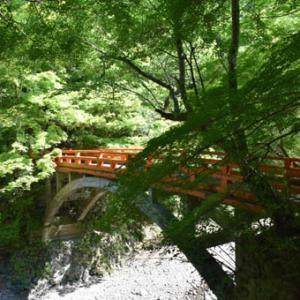 槇尾山 西明寺