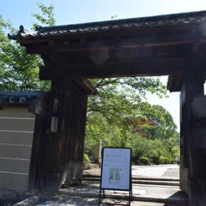 仁和寺-その2(伽藍)