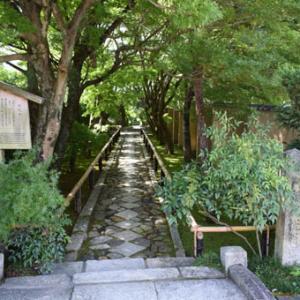 京都市北区鷹峯-その3(光悦寺)