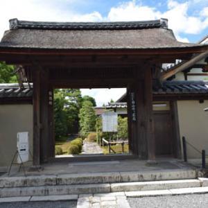 大徳寺-その2(塔頭・龍源院、徳禅寺)