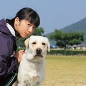 警察犬「きな子」 (再掲載・写真)
