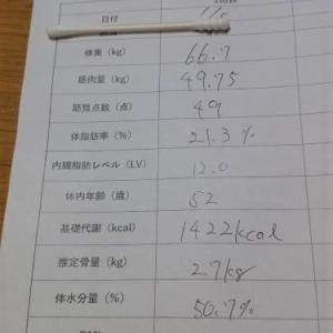 体脂肪減少チャレンジ(2)