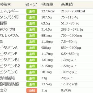 体全体の健康の中で糖尿病を考える。(3)