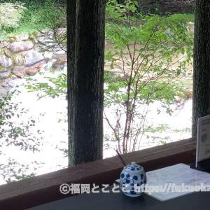 寅さんのロケ地にもなった森林浴のできるカフェ/『モクモクハウス』