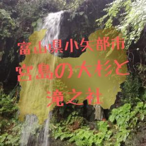 【富山】小矢部市・滝之社と宮島の大杉