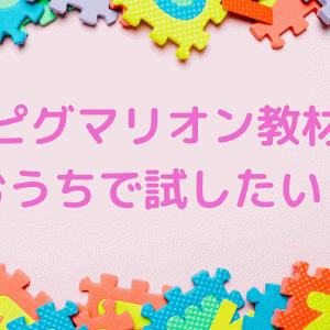 ピグマリオンの教材を試したい!代用できる市販のおすすめ知育玩具!