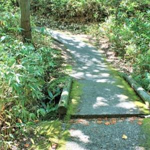 """Noboribetsu Onsen Walk ③* (About 10 minutes on foot)From """"Tessen-Ike (Iron Spring Pond)"""" to """"Jigoku-Dani (Hell Valley) Observatory"""" through """"Jigoku-Dani (Hell Valley) Observatory""""~A path to feel cool and calm air surrounded by greenery~"""