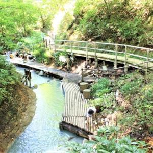 "Noboribetsu Onsen Walk ⑤*From ""Oyunuma (Oyu Swamp)"" to ""Oyunuma Brook Natural Footbath""~Road full of nature and freshness, where you can see wild deer~"