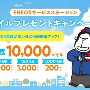 ENEOSエネオス マイルプレゼント JALカード特約店 キャンペーン ガソリン