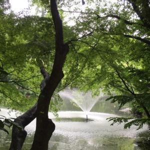 雨の日でも楽しめる場所教えて!