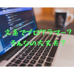 【IT業界】文系でプログラマーになっても大丈夫?→結論から言うと、まぁ大丈夫。