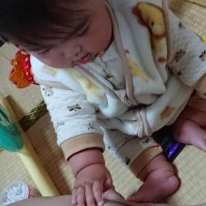全ての赤ちゃんはすね毛好き。