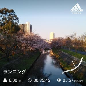 第4回 海老川マラソン開催に暗雲(><)