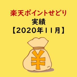 楽天ポイントせどり11月の実績【購入金額・利益率】
