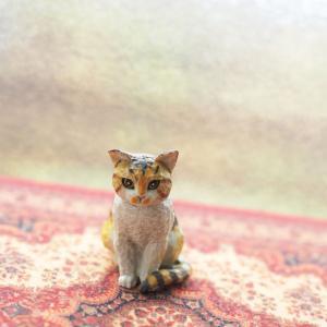 6.ド-ルハウスのネコ