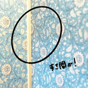 7.組み立て中ハウスの隙間