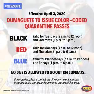 コロナ関連4月2日|フィリピン・ドゥマゲッティの自宅待機令