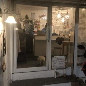 韓国版深夜食堂|韓国バー「YOGI」