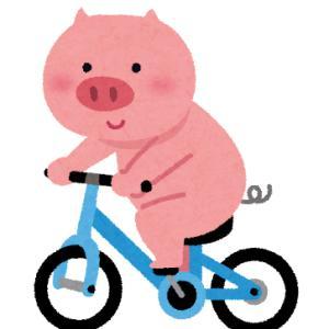 夕飯ですよ アシスト自転車12km