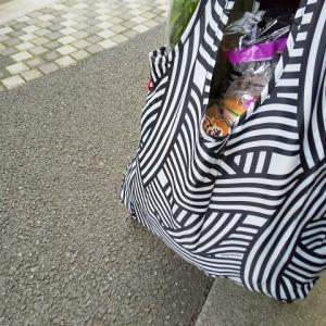 レジかごバッグおしゃれで保冷機能付きおすすめ6選!大容量で使いやすさが人気!