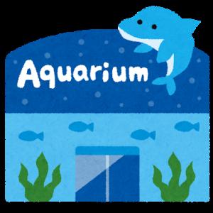 夏の須磨海浜水族園は夜までたっぷり楽しめちゃう!