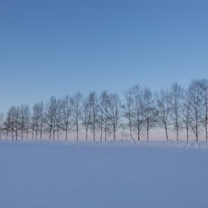 北海道がロシア領になったら移住するかも