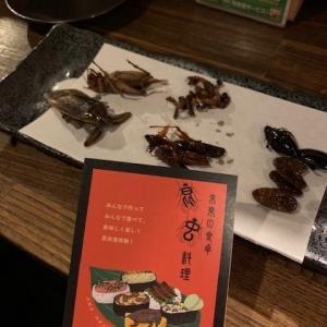 【昆虫食:実食レポ】都内で気軽に挑戦できるお店を紹介!