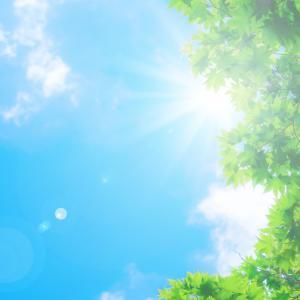 【五月雨(さみだれ)登校】不登校に悩むママ あせらないでくださいね