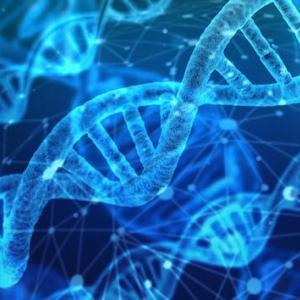 【衝撃】人間のDNAを調べると本来の寿命はたった38年しかなかったことが判明!!