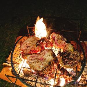 秋のキャンプに焚き火で無骨に焼いた肉料理を食らう!牛肉、豚肉はそのまま焼いて鶏肉はチーズタッカルビに