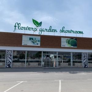 ウズベキスタンで観葉植物を買うなら