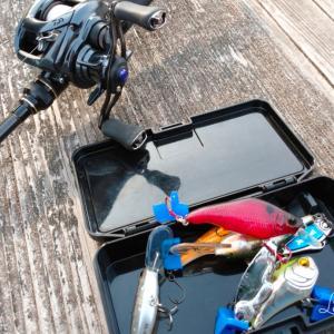 【初釣り】2021年バス釣り始動