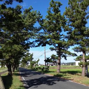 東海道五十三次(掛川宿~見付宿)