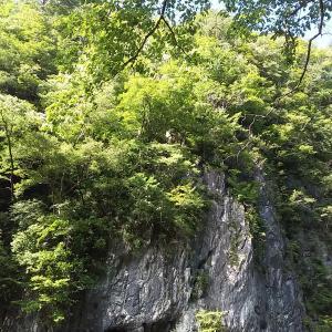 美しい猊鼻渓、美味しい関山