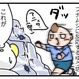 海嫌いのゆう坊、砂浜へ!【中編】