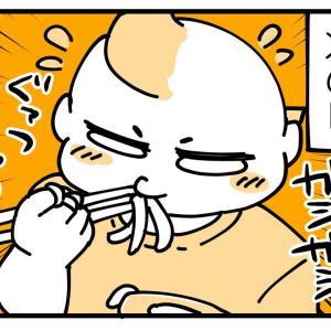 手づかみ食べから箸に覚醒した話