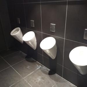 【衝撃】ドイツの男性用トイレは何と!?