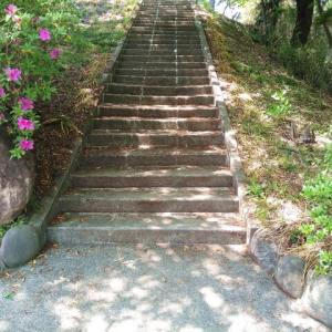 「成長への階段」完成!!