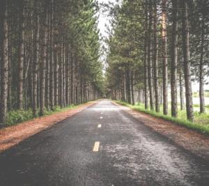 雨でアスファルト路面欠陥が出る