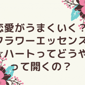 恋愛がうまくいく?フラワーエッセンス☆ハートってどうやって開くの?