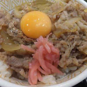 すき家のワンコインランチセット(イオン太田店)