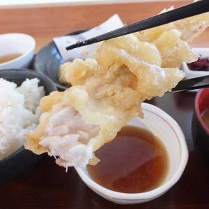 なまず天ぷら定食(さくら食堂 道の駅かぞわたらせ)