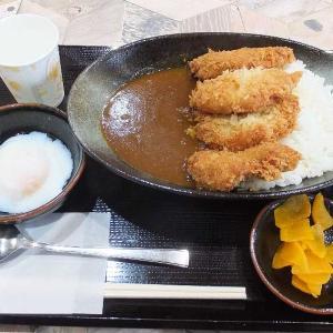 ひれかつカレー限定30食100円引き(ひれかつ祭り)