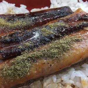 鰻重+牛小鉢(吉野家)