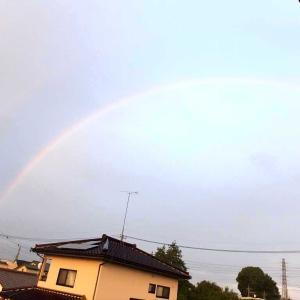 朝の虹を撮った🌈