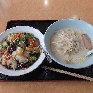 激安ランチ豚骨ラーメン+中華飯(太田一龍)