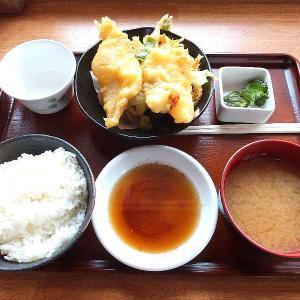 なまず天ぷら定食(道の駅かぞわたらせ)