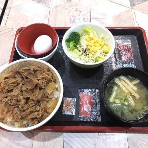 ワンコイン牛丼ランチセット(すき家イオン太田店)